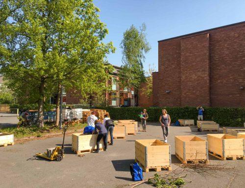 Urban Gardening Startschuss