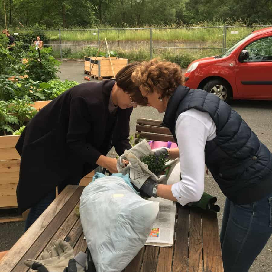 Gärtner beim awalla Urban Gardening