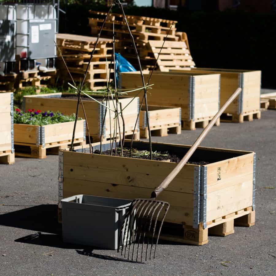 Urban Gardening Beet bepflanzt